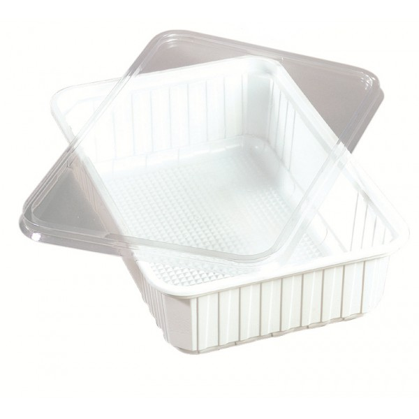 White rectangular plastic food container, 2700 cc - package of 5 food packages