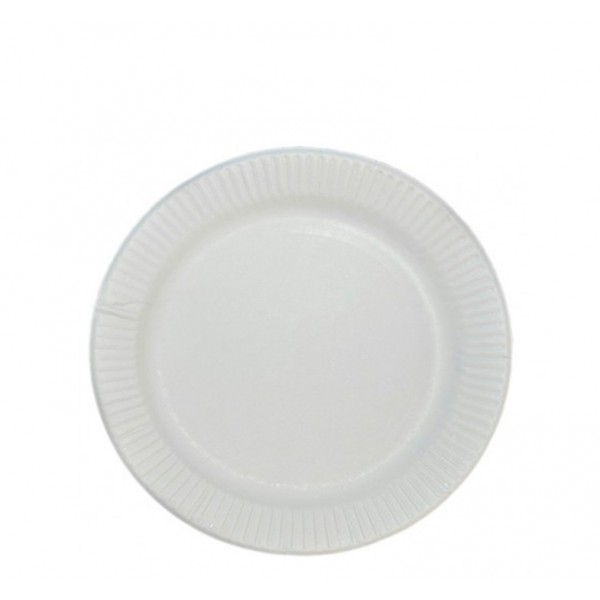 White paper plates, 6 - package of 100 plates
